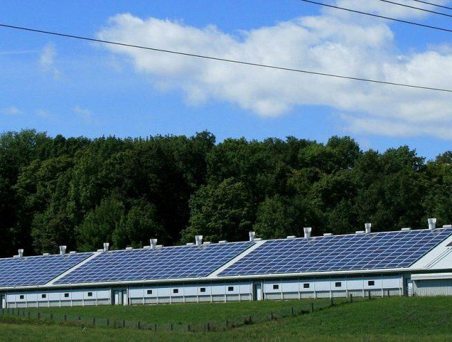 Una granja es abastecida por un sistema de paneles solares.